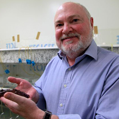 UCLA biologists 'transfer' a memory