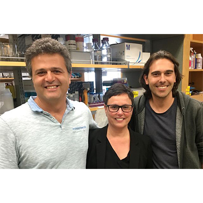 Three neuroscientists earn prestigious NIH grant for brain research