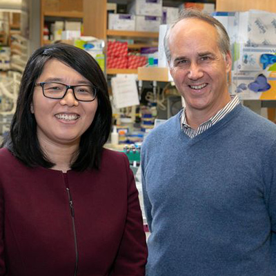 UCLA-led team uncovers critical new clues about what goes awry in brains of people with autism