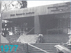 The BRI Story 1977