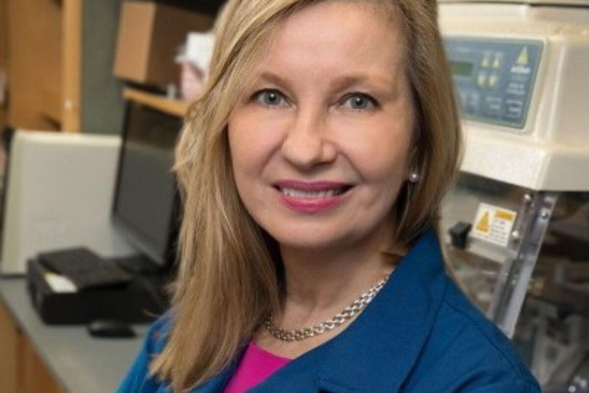 Anne M. Andrews, Ph.D.