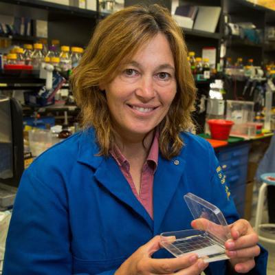 Carla M. Koehler, Ph.D.