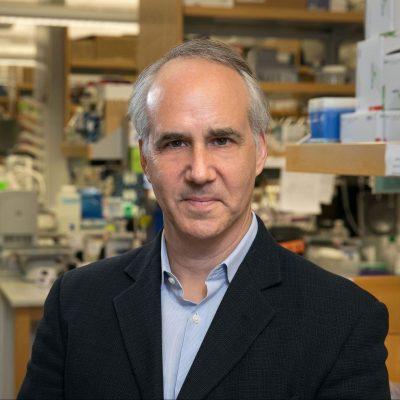 Daniel Geschwind, M.D., Ph.D.