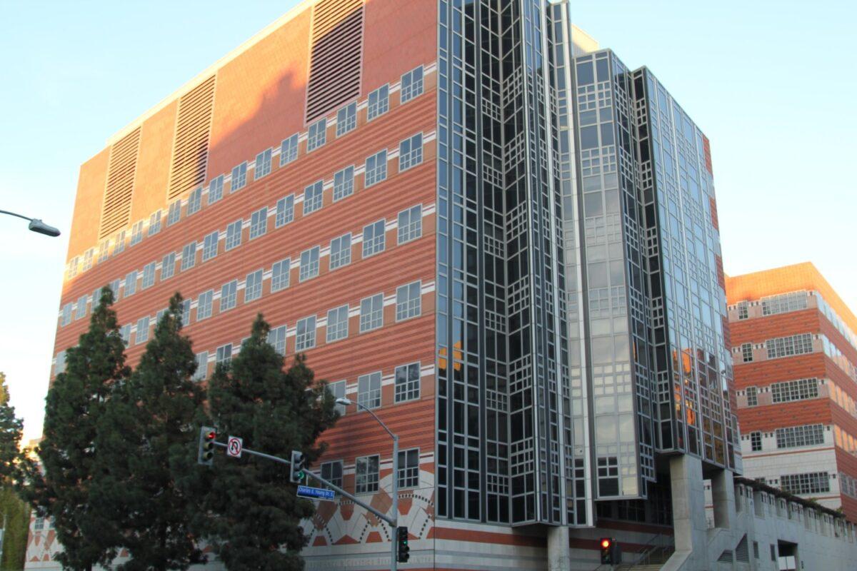 Brain Research Institute