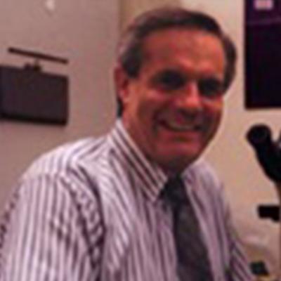 Francesco Chiappelli, Ph.D.