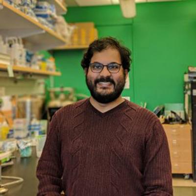 Pavak Shah, Ph.D.