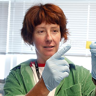 Stephanie White, Ph.D.