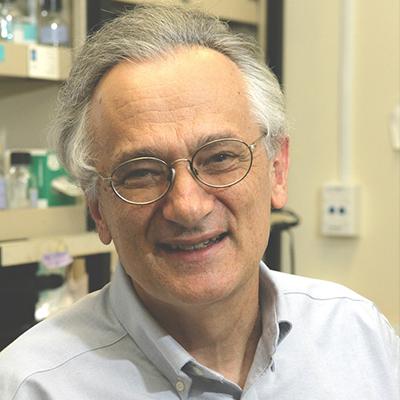 Steven G. Clarke, Ph.D.