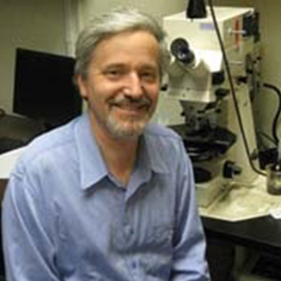 Volker Hartenstein, M.D., Ph.D.