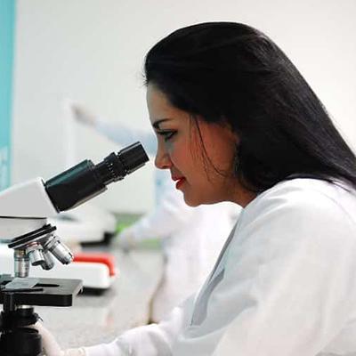 Lab-grown brain organoids mature similarly to infant brains
