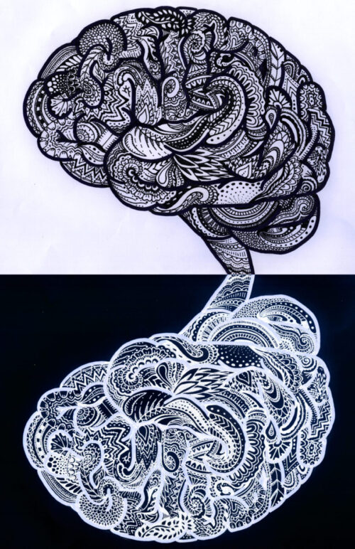 Neuroscience History