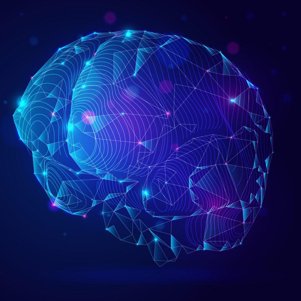 Computational and Systems Neuroscience FAR