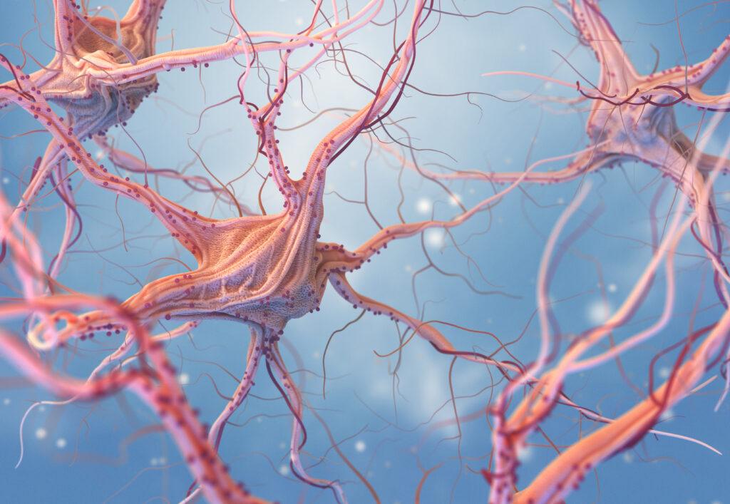 Neural Repair FAR