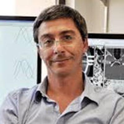Dario Ringach, Ph.D.
